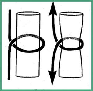 Passage correct: Le fil forme une boucle qui se ferme sur elle même pour attraper le tendon