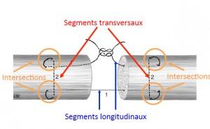 schema-suture-tendons-flechisseurs